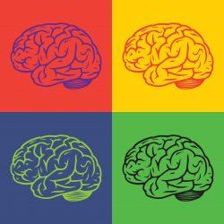 À Vos Cerveaux !