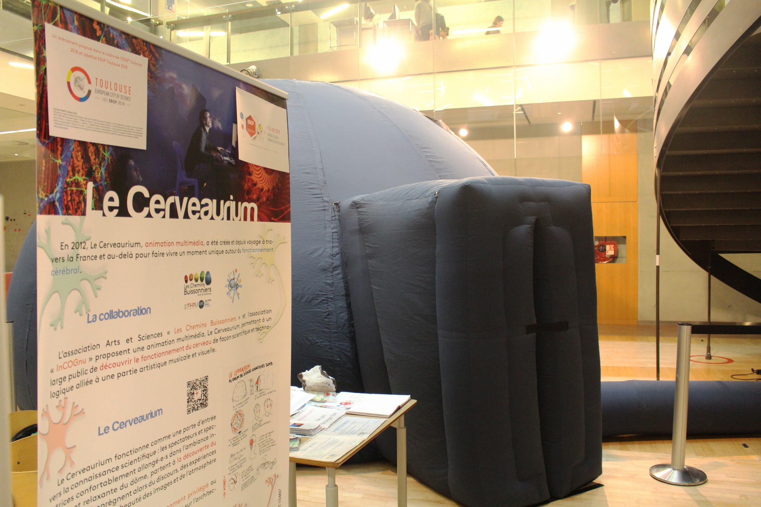 Cerveaurium 2